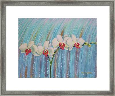 Waterfall Orchid  Framed Print by Bonnie Golden