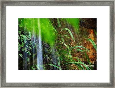 Waterfall Over Ferns Framed Print by Kaye Menner