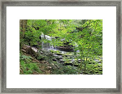 Waterfall Ricketts Glen State Park Pa Framed Print