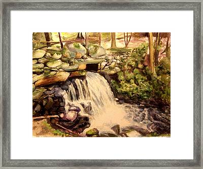 Waterfall Sharon Audubon 12x16 Framed Print