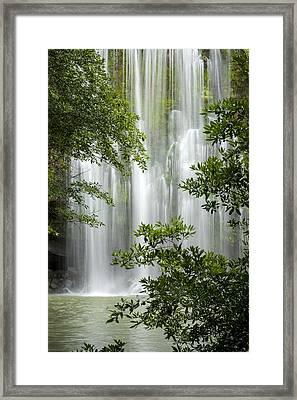 Waterfall Through Trees Framed Print by Juan Carlos Vindas