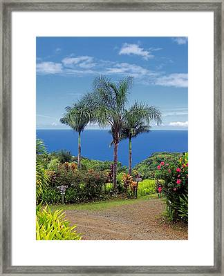 Waterfall Trail Framed Print
