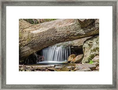 Waterfall Under Fallen Log Framed Print by Jonah  Anderson