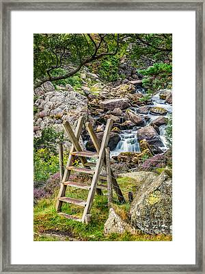 Waterfall Way Framed Print by Adrian Evans