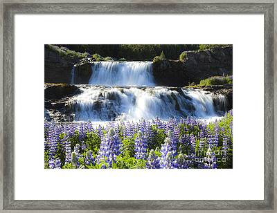 Waterfall With Flowers Framed Print