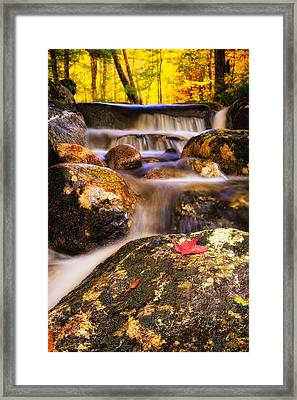 Waterfall With Red Maple Leaf. Framed Print by Jeff Sinon