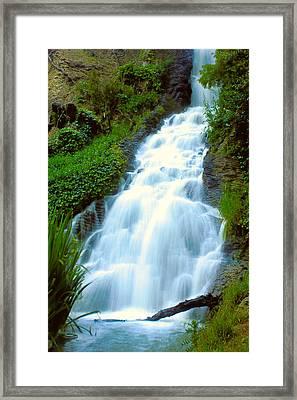 Waterfalls In Golden Gate Park Framed Print