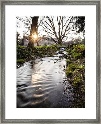 Waterfalls In The Park Framed Print by Alfio Finocchiaro
