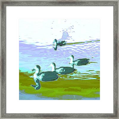 Waterfowl-abstract Framed Print by Tom Druin