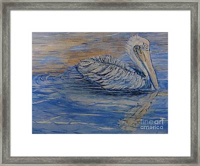 Waterfowl Realistic Reflection Horizontal Closeup  Framed Print