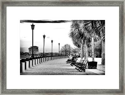 Waterfront Park Seats Framed Print