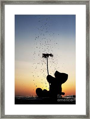 Watering A Flower Framed Print