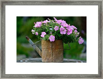 Watering Can And Flowers Framed Print by Kathy King