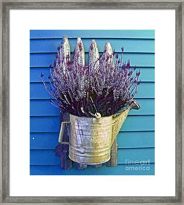 Watering Can On The Blue Wall Framed Print