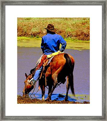 Watering Hole 4 Framed Print by Antonia Citrino