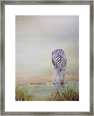 Watering Hole Framed Print by Cynthia Roudebush