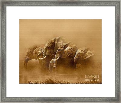 Watering Hole Framed Print by Robert Foster