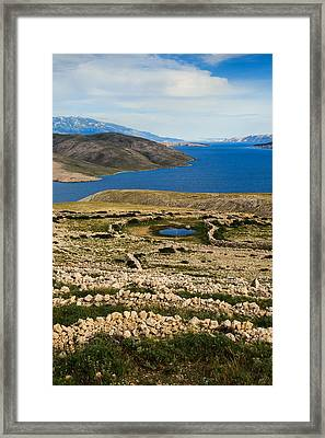 Watering Place Framed Print by Davorin Mance