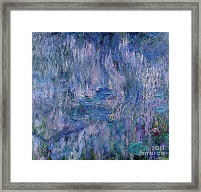 Waterlilies And Reflections Of A Willow Tree Framed Print by Claude Monet