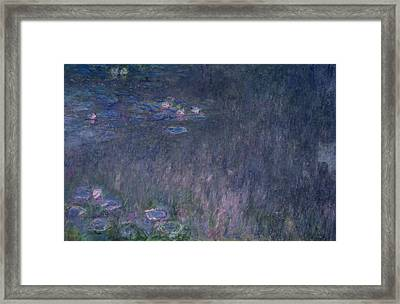 Waterlilies Reflections Of Trees, Detail From The Left Hand Side, 1915-26 Framed Print