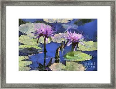 Waterlilies Framed Print by Teresa Zieba