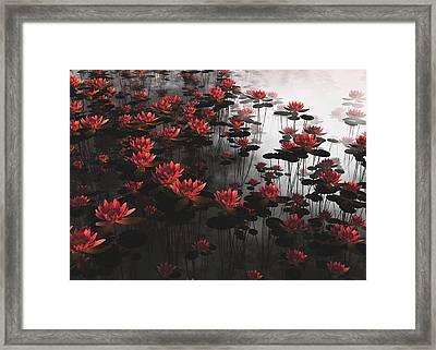 Waterlillies Framed Print