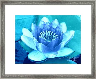 Waterlily Blue 2 Framed Print