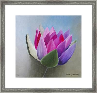 Waterlily Framed Print by Carola Ann-Margret Forsberg