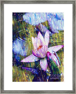 Purple Waterlily Paradise Framed Print by Carol F Austin