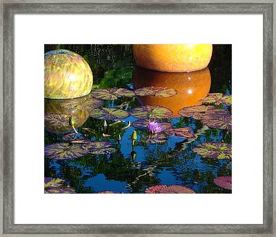 Waterlily Reflections Framed Print