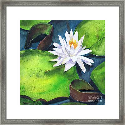 Waterlily Framed Print by Susan Herbst