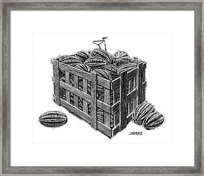 Watermelon Crate Framed Print by Jim Harris