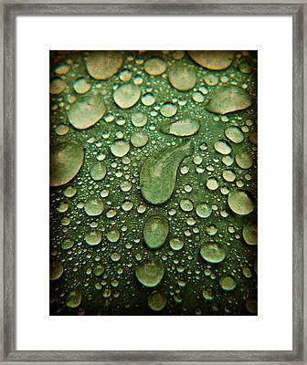 Raindrops On Watermelon Rind Framed Print by Chris Berry