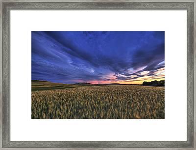 Watermelon Sunset Framed Print by Mark Kiver