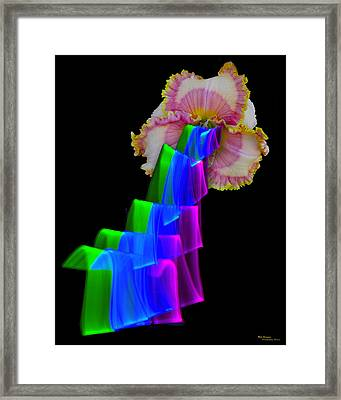 Watermelon Taffy Framed Print