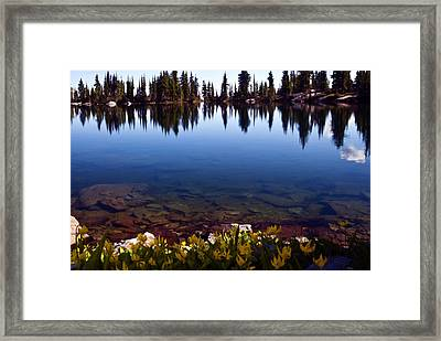 Water's Edge Framed Print by Randolph Fritz