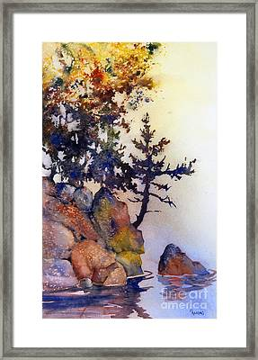 Water's Edge Framed Print by Teresa Ascone