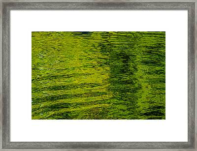 Water's Green Framed Print