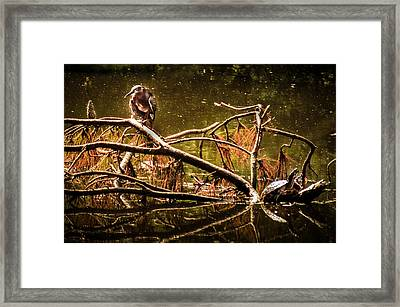 Waters Of Autumn Framed Print by Karen Wiles
