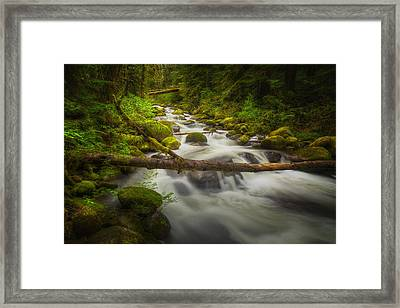 Waters Of Larch Mountain Framed Print