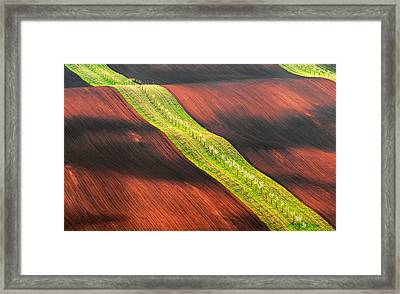 Waterslide Framed Print