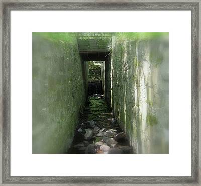 Waterway Framed Print by Bruce Carpenter