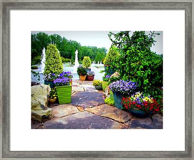 Waterway Path Framed Print
