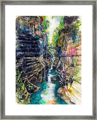 Watkins Glen Gorge Framed Print by Patricia Allingham Carlson