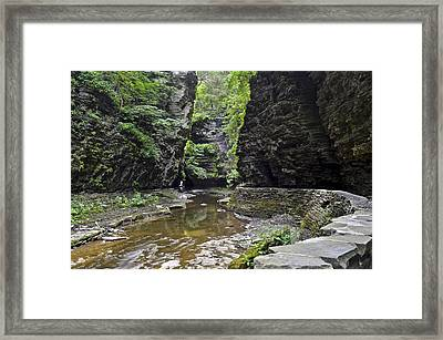 Watkins Glen Gorge Framed Print