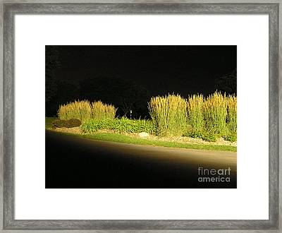 Waukegan Golf Course Framed Print