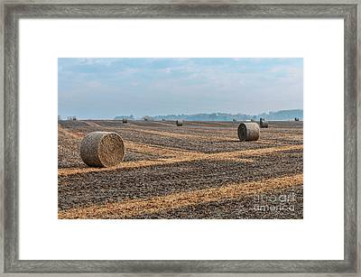 Framed Print featuring the photograph Waupaca Straw Rolls by Trey Foerster