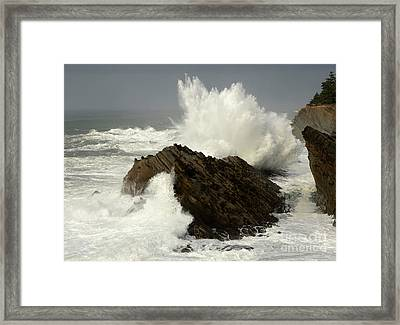 Wave At Shore Acres Framed Print by Bob Christopher
