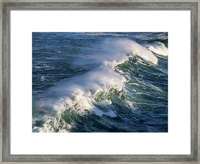 Wave Breaking At Shore Acres State Park Framed Print by Robert L. Potts