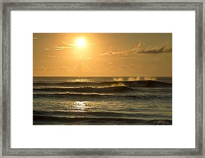 Waves Of Life Framed Print by Skip Tribby